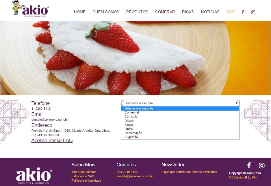 Novo website em WordPress - novo site akio sac